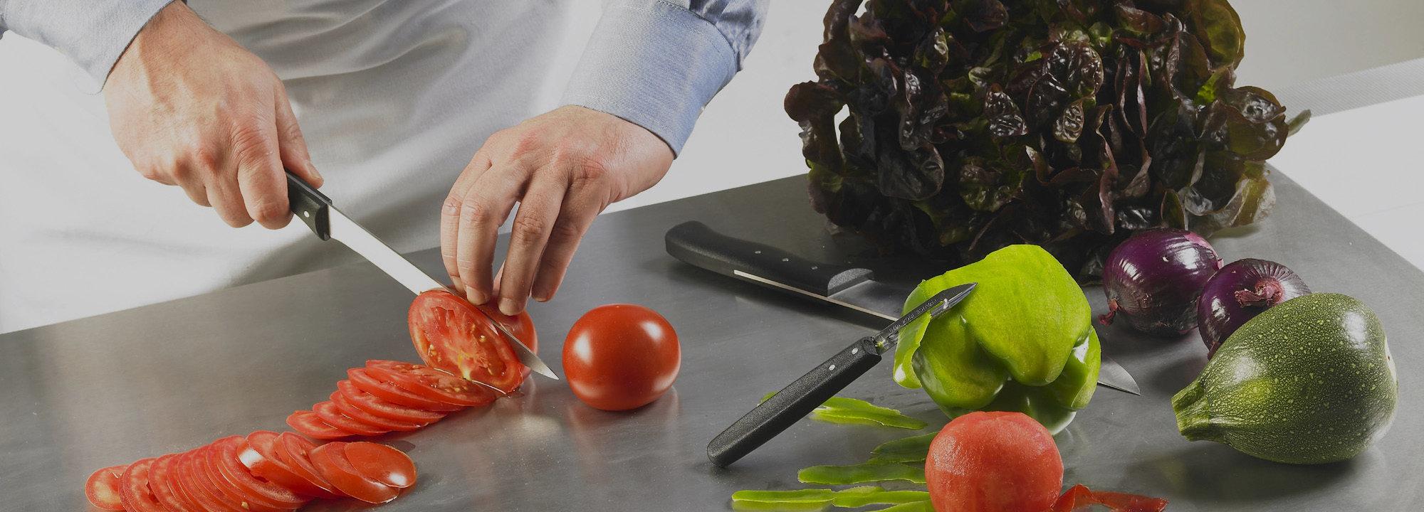 Couteau cuisine Gamme Expert Nogent