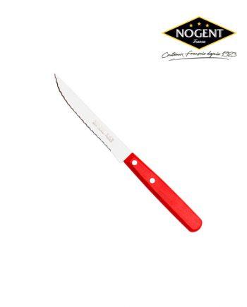 couteaux avec manche de couleur